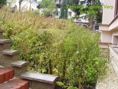 55 zahradavyhlidka