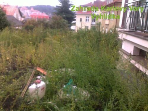 56 zahradavyhlidka